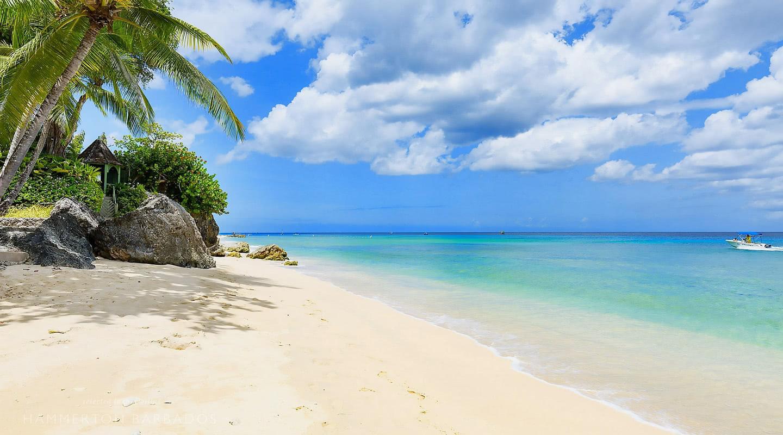 Sandy Cove 201 - Paradise villa in Derricks, Barbados