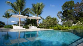 Swimming pool and sun loungers with palm trees and blue sky in the background
