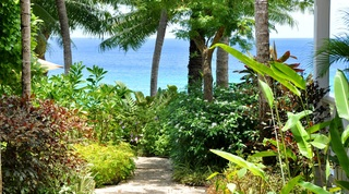Secret Cove 4 villa in Derricks, Barbados
